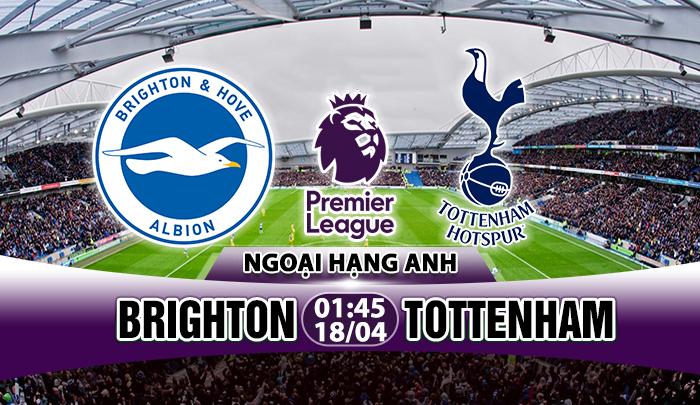 Link sopcast: Brighton vs Tottenham, 01h45 ngày 18/4