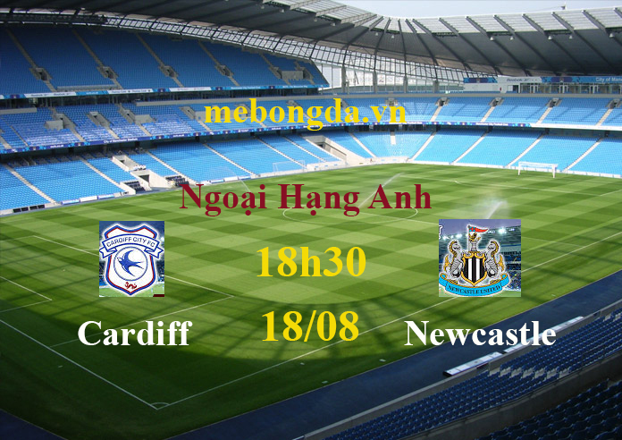 Link sopcast: Cardiff vs Newcastle, 18h30 ngày 18/8