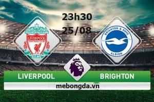 Link sopcast: Liverpool vs Brighton 23h30 ngày 25/08