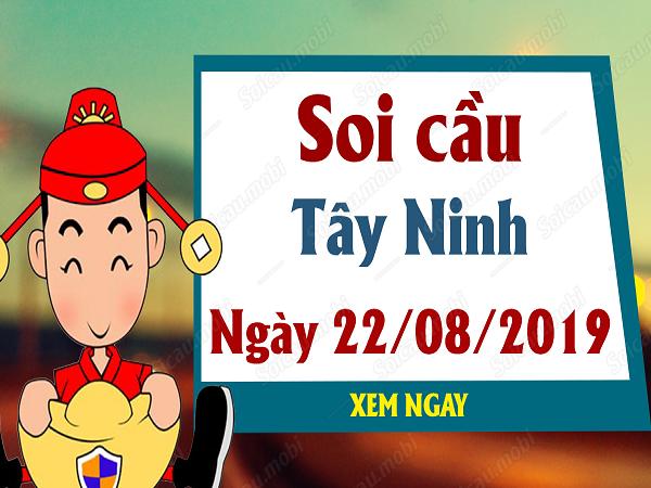 Tổng hợp kết quả kết quả xổ số Tây Ninh ngày 22/08 chuẩn xác
