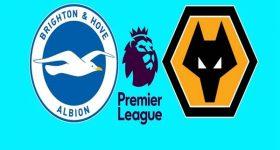 Link sopcast Brighton vs Wolves, 23h30 ngày 8/12