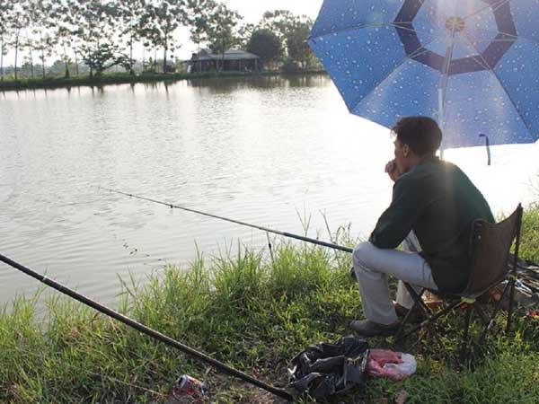 Mơ thấy câu cá là điềm lành hay dữ?