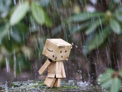 Mơ thấy mưa nên đánh con bao nhiêu? ý nghĩa giấc mơ?