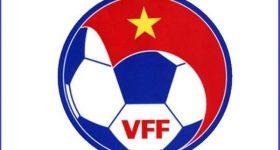 VFF là gì? Những thông tin mà bạn cần biết về VFF