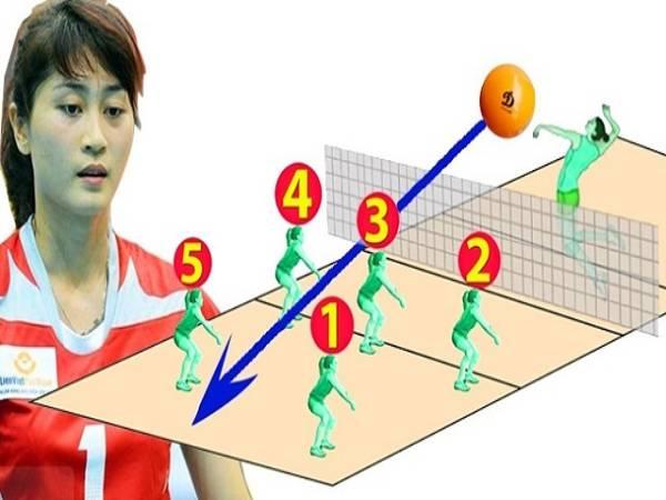 Cách di chuyển trong bóng chuyền đúng chuẩn kỹ thuật