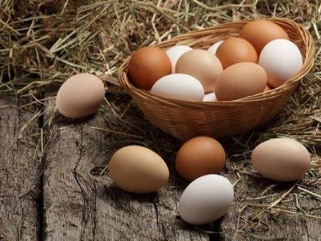 Mơ thấy trứng là điềm hên hay xui? Đánh liền tay số mấy?